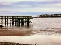 Αποβάθρα στην παραλία ξύλων καρυδιάς Στοκ Φωτογραφία