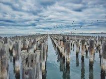 Αποβάθρα Aussie Στοκ Εικόνες