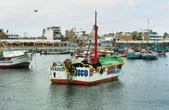 Αποβάθρα Paracas, Περού Στοκ φωτογραφία με δικαίωμα ελεύθερης χρήσης