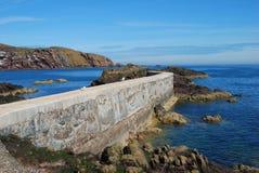 Αποβάθρα, seagulls, απότομοι βράχοι και ακτή στο ST Abbs, Berwickshire Στοκ εικόνα με δικαίωμα ελεύθερης χρήσης