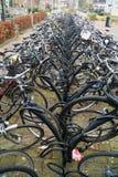Αποθήκευση ποδηλάτων στοκ φωτογραφία με δικαίωμα ελεύθερης χρήσης