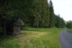 Αποθήκευση σανού - τροφοδότης για τη σίτιση των άγριων δασικών ζώων στην κοιλάδα Ilanovska στοκ φωτογραφίες
