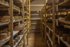 Αποθήκευση τυριών scamorza ricotta ε caciocavallo Pecorino στοκ φωτογραφίες με δικαίωμα ελεύθερης χρήσης