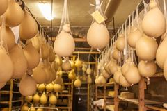 Αποθήκευση τυριών scamorza ricotta ε caciocavallo Pecorino στοκ εικόνα