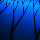 αποθανούν δάσος Στοκ Φωτογραφία