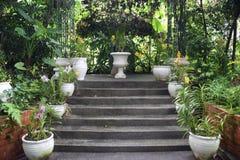 Αποικιακά σκαλοπάτια ρύθμισης κήπων με τα δοχεία λουλουδιών Στοκ εικόνα με δικαίωμα ελεύθερης χρήσης