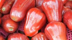 Αποκαλούμενα ταϊλανδικά ρόδινα μήλα Εξωτικοί καρποί της Ταϊλάνδης και της Ασίας απόθεμα βίντεο