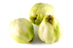 Αποκαλούμενο κυδώνι της Apple ποικιλία ή oblonga cotogna Στοκ εικόνες με δικαίωμα ελεύθερης χρήσης