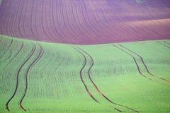 Αποκαλούμενο τοπίο Moravian Τοσκάνη, Μοραβία, Δημοκρατία της Τσεχίας Στοκ εικόνα με δικαίωμα ελεύθερης χρήσης