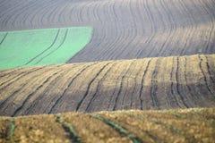 Αποκαλούμενο τοπίο Moravian Τοσκάνη, Μοραβία, Δημοκρατία της Τσεχίας Στοκ φωτογραφία με δικαίωμα ελεύθερης χρήσης