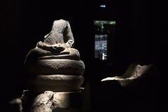 Αποκεφαμένο γλυπτό του Βούδα σε Angkor Στοκ εικόνα με δικαίωμα ελεύθερης χρήσης