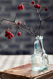 Αποκριές, γοτθικό υπόβαθρο Κράταιγος brunches Στοκ φωτογραφία με δικαίωμα ελεύθερης χρήσης
