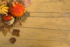 Αποκριές: ζωηρόχρωμες κολοκύθες στον ξύλινο πίνακα ως υπόβαθρο στοκ φωτογραφία με δικαίωμα ελεύθερης χρήσης