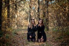 Αποκριές μανιακές και μάγισσα στο δάσος στοκ φωτογραφία με δικαίωμα ελεύθερης χρήσης