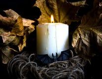 Αποκριές με τα κεριά και ένα ρόπαλο Στοκ φωτογραφίες με δικαίωμα ελεύθερης χρήσης