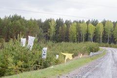 Αποκριές στη Σιβηρία Τσάντες με τις σχισμές για τα μάτια, μύτη και στόμα, που φοριούνται στα νέα δέντρα πεύκων, στην πλευρά του δ στοκ φωτογραφία με δικαίωμα ελεύθερης χρήσης