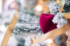 Απολαμβάνοντας τη ημέρα των Χριστουγέννων - δώρο διακοπών για την στοκ φωτογραφίες με δικαίωμα ελεύθερης χρήσης