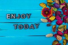 Απολαύστε σήμερα το κείμενο στο μπλε ξύλο με το λουλούδι στοκ εικόνα με δικαίωμα ελεύθερης χρήσης