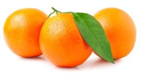 απομονωμένα ανασκόπηση πορτοκάλια τρία αντικειμένου λευκό Στοκ Εικόνες