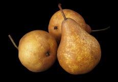 απομονωμένα αχλάδια τρία στοκ εικόνα με δικαίωμα ελεύθερης χρήσης