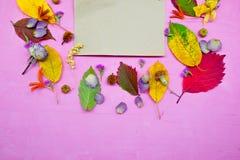 Απομονωμένα ζωηρόχρωμα φύλλα φθινοπώρου με τα λουλούδια και έγγραφο για το πορφυρό υπόβαθρο Στοκ Φωτογραφίες