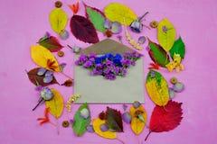 Απομονωμένα ζωηρόχρωμα φύλλα φθινοπώρου με τα λουλούδια και φάκελος στο πορφυρό υπόβαθρο Στοκ Εικόνες