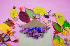 Απομονωμένα ζωηρόχρωμα φύλλα φθινοπώρου με τα λουλούδια και φάκελος στο πορφυρό υπόβαθρο Στοκ εικόνα με δικαίωμα ελεύθερης χρήσης