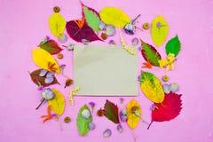 Απομονωμένα ζωηρόχρωμα φύλλα φθινοπώρου στο πορφυρό υπόβαθρο Στοκ Φωτογραφίες