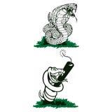 Απομονωμένα διάνυσμα επιθετικά δηλητηριώδη φίδια απεικονίσεων Στοκ Εικόνα