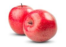 Απομονωμένα κόκκινα μήλα στο άσπρο υπόβαθρο φρέσκος στοκ εικόνες