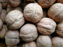 απομονωμένα ξύλα καρυδιά&sigma Στοκ εικόνα με δικαίωμα ελεύθερης χρήσης