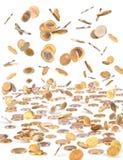 Απομονωμένα πετώντας χρήματα, μειωμένα νομίσματα για την επιχείρηση στο άσπρο β Στοκ φωτογραφίες με δικαίωμα ελεύθερης χρήσης