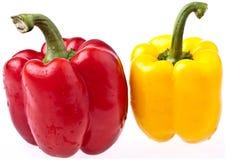 απομονωμένα πιπέρια τέλει&alpha Στοκ Εικόνες