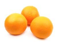 απομονωμένα πορτοκάλια Στοκ Φωτογραφία
