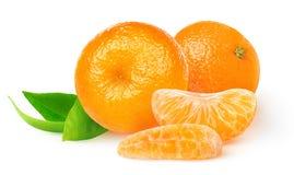 Απομονωμένα φρέσκα tangerines στοκ φωτογραφία