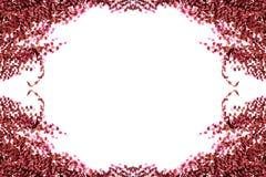 απομονωμένα φύλλα κισσών Στοκ εικόνες με δικαίωμα ελεύθερης χρήσης