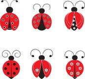Απομονωμένες απεικονίσεις Ladybug Στοκ φωτογραφία με δικαίωμα ελεύθερης χρήσης
