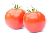 απομονωμένες κόκκινες ντομάτες δύο Στοκ εικόνες με δικαίωμα ελεύθερης χρήσης