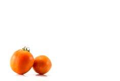 Απομονωμένες ντομάτες Στοκ Φωτογραφία
