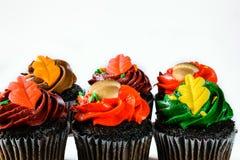 Απομονωμένη ζωηρόχρωμη σοκολάτα Cupcakes Στοκ φωτογραφία με δικαίωμα ελεύθερης χρήσης