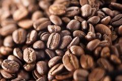 απομονωμένη ιδανικό μακροεντολή καφέ προγευμάτων φασολιών πέρα από το λευκό Στοκ φωτογραφία με δικαίωμα ελεύθερης χρήσης