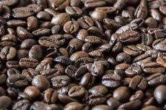 απομονωμένη ιδανικό μακροεντολή καφέ προγευμάτων φασολιών πέρα από το λευκό Στοκ Εικόνα