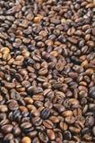 απομονωμένη ιδανικό μακροεντολή καφέ προγευμάτων φασολιών πέρα από το λευκό Υπόβαθρο Στοκ Εικόνα