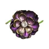 απομονωμένη λουλούδι καρφίτσα Στοκ Εικόνες