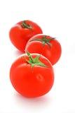 απομονωμένη ντομάτα Στοκ φωτογραφία με δικαίωμα ελεύθερης χρήσης
