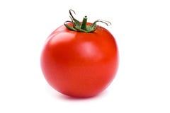 απομονωμένη ντομάτα Στοκ εικόνα με δικαίωμα ελεύθερης χρήσης