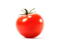 απομονωμένη ντομάτα Στοκ εικόνες με δικαίωμα ελεύθερης χρήσης