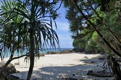 Απομονωμένη παραλία Koh Kradan Στοκ εικόνες με δικαίωμα ελεύθερης χρήσης