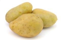 απομονωμένη πατάτα Στοκ Φωτογραφίες