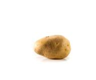 απομονωμένη πατάτα Στοκ Εικόνες